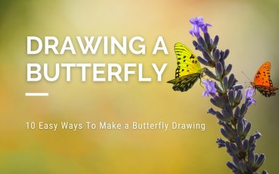 10 Easy Ways To Make a Butterfly Drawing